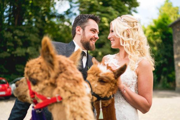 070 Hochzeitsfotograf fulda stefan franke hochzeitsreportage