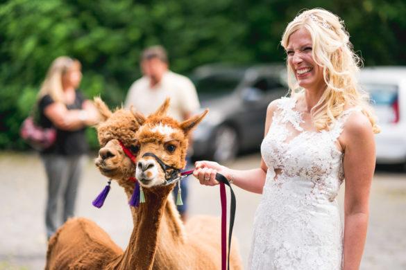076 Hochzeitsfotograf fulda stefan franke hochzeitsreportage