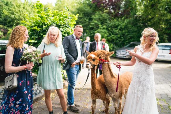 078 Hochzeitsfotograf fulda stefan franke hochzeitsreportage