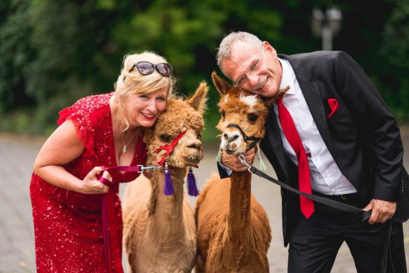 082 Hochzeitsfotograf fulda stefan franke hochzeitsreportage